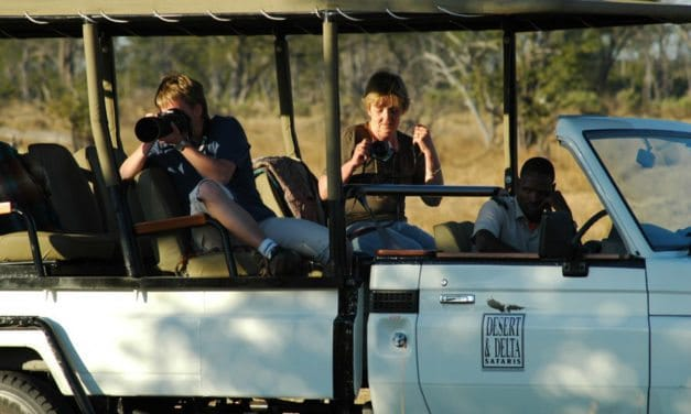 8 essential tips for an unforgettable African safari
