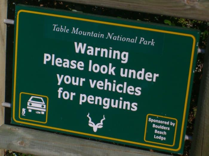 """Warning sign at Boulders Beach - """"Please look under your vehicles for penguins"""""""