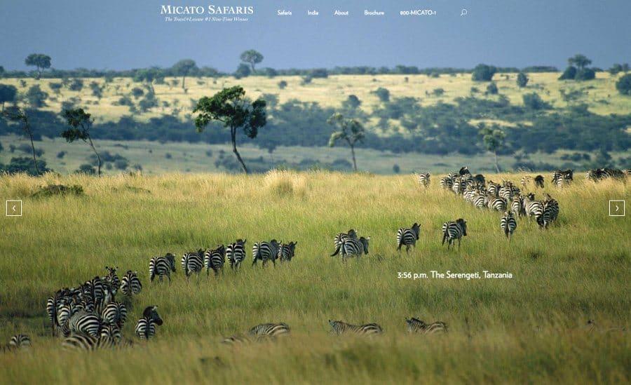 The world's best safari companies