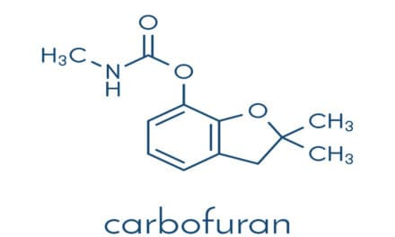 The negative effects of Carbofuran on Africa's wild animals