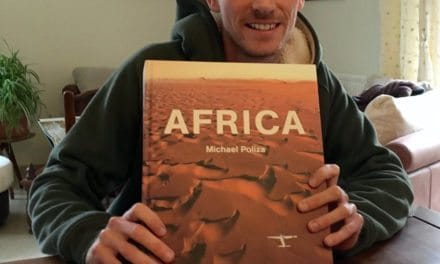 Best safari guides and books to buy
