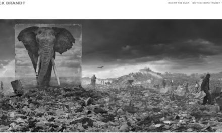Top websites for African wildlife photography