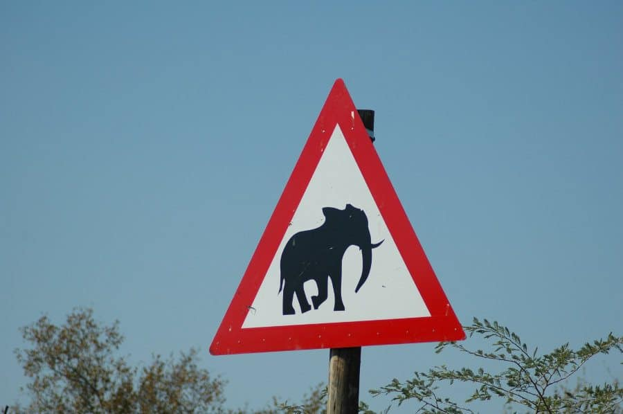 """Funny and unusual """"signs"""" of the wild"""