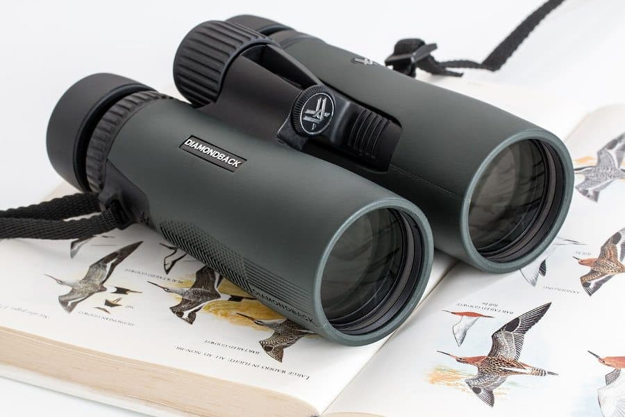 How to: choose the best safari binoculars
