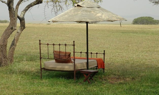 What makes a safari camp special?