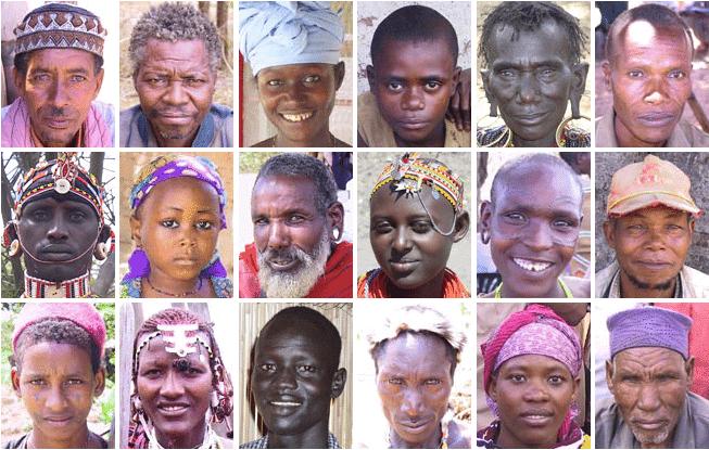 Reddit AMA unravels the mind-boggling genetic diversity of African peoples