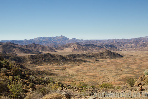 Away from the river, the Richtersveld is dry mountain desert