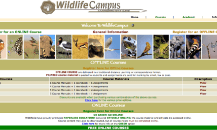 Learn all about African wildlife with WildlifeCampus