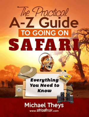 Sounds of the Wild: Most Popular Safari Sounds in Africa