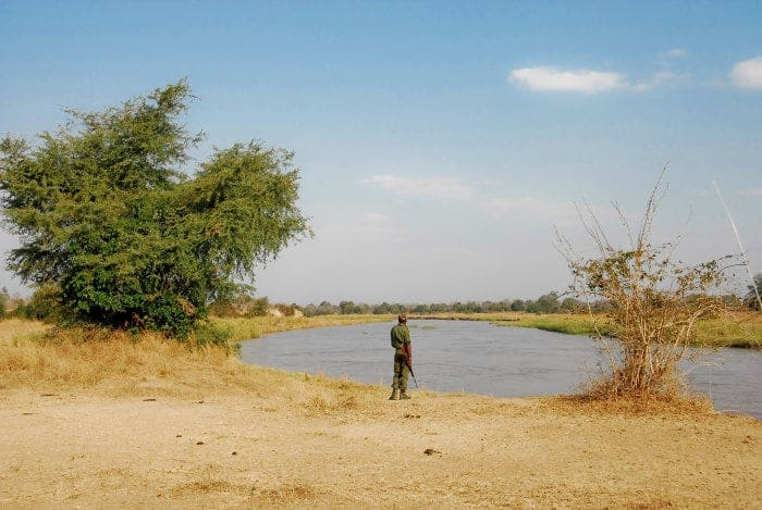 Local ranger looking over the Luangwa River, North Luangwa National Park