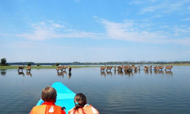 Lake Naivasha – One of Africa's best-kept secrets
