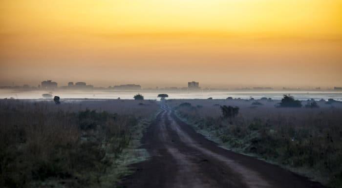 Nairobi National Park at dawn