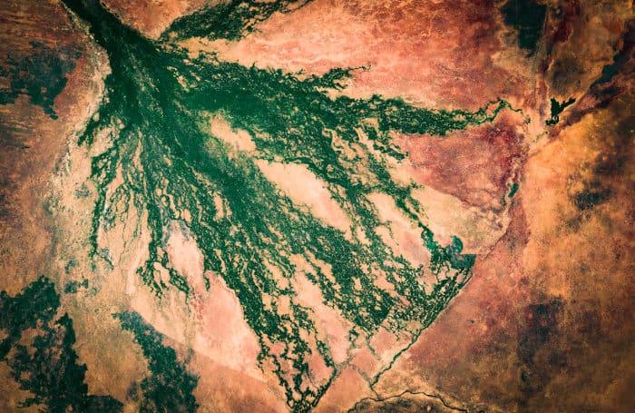 Okavango Delta satellite image