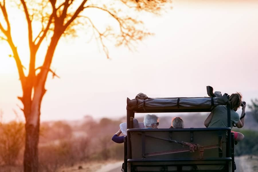 South Africa Safari – The easy planning guide for first-time visitors
