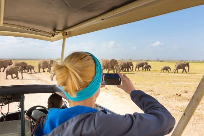 Woman watching elephants in Amboseli National Park