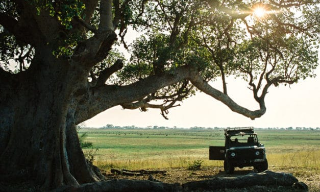 Kafue National Park – The practical guide to Zambia's largest park