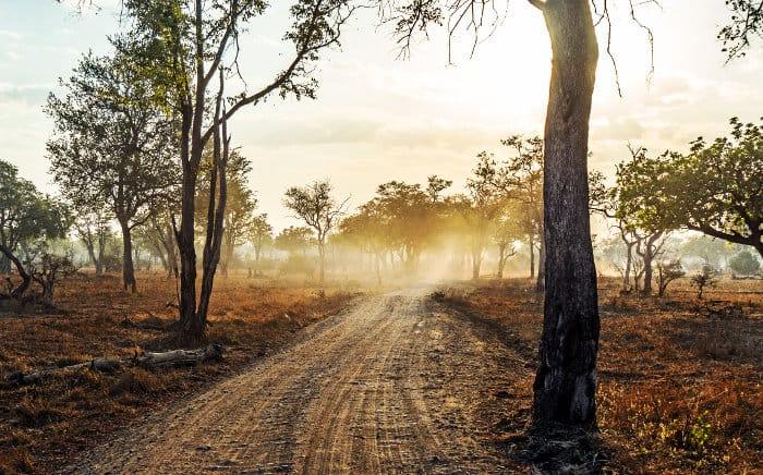 Typical road in South Luangwa National Park