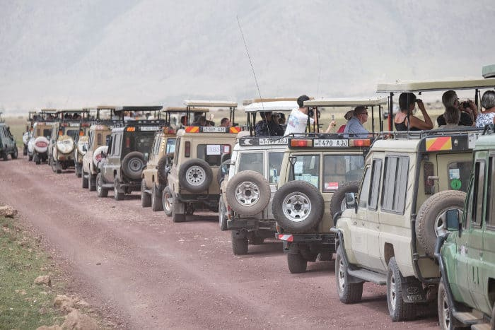 Ngorongoro safari craze during peak hours