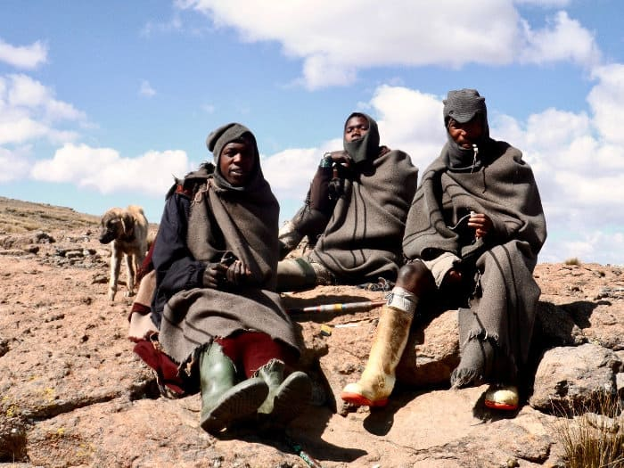 Most men work as shepherds in Lesotho. They start around age 10 and get paid a sheep for every month they work