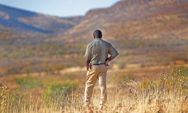 How to find an exceptional guide for your safari