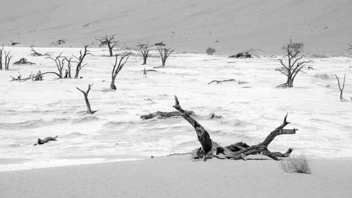 Deadvlei clay pan in black and white