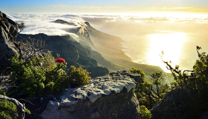 Top of Table Mountain covered in clouds at sunset