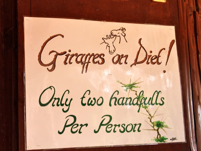 Giraffes on diet! Only two handfuls per person.