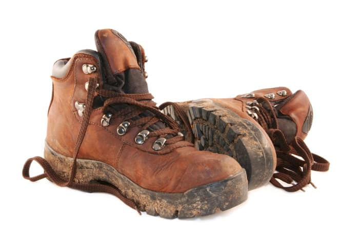 Sturdy walking boots are only essential on safari walks