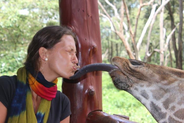 Pretty woman gets kissed by a giraffe's slurpy tongue