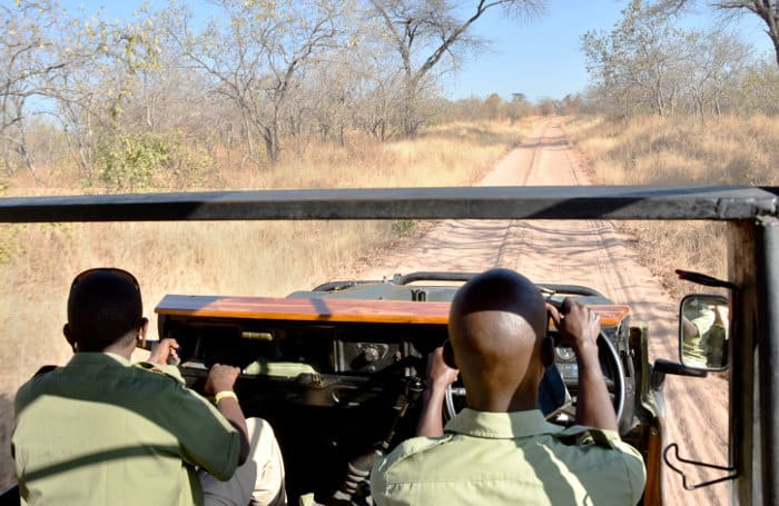 Game drive in Ruaha National Park