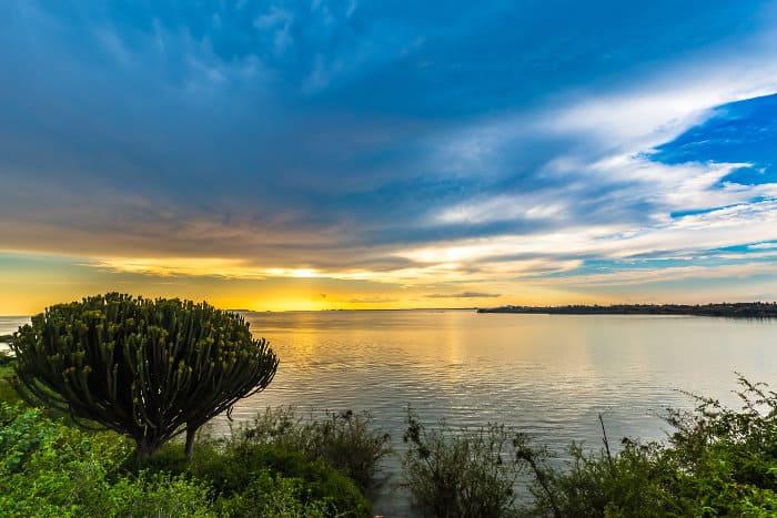 The shores of Lake Victoria at sunset, Kenya