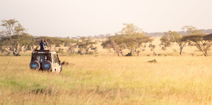 Off-roading in the Serengeti, in harmony with nature