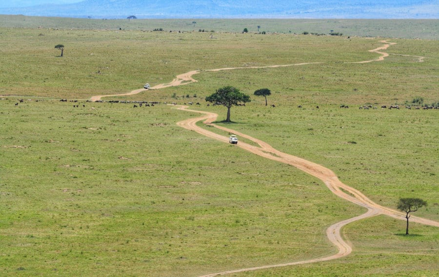 Finding budget safaris in Africa – Easy to use guide