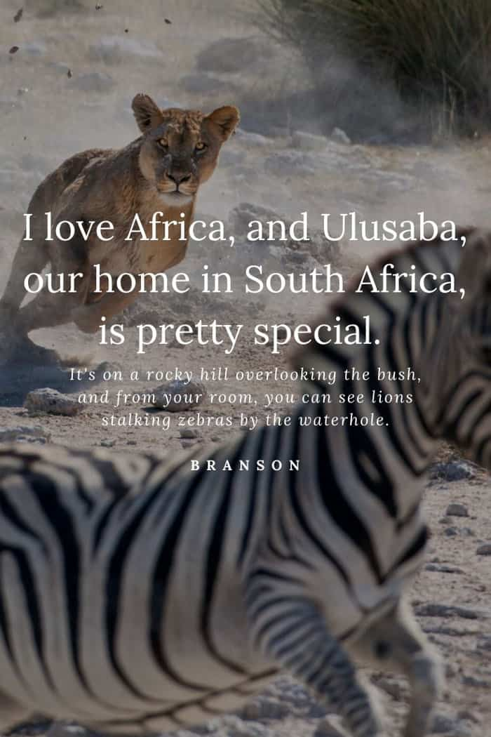 Richard Branson wildlife quote about lions stalking zebras by the waterhole