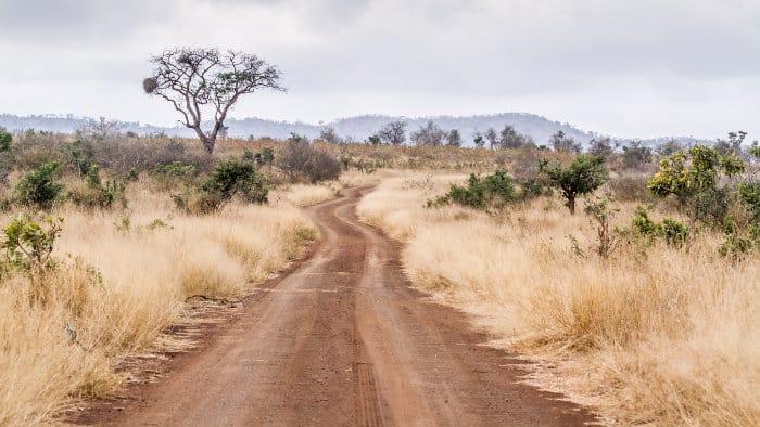 Dirt road in Afsaal area, Kruger park