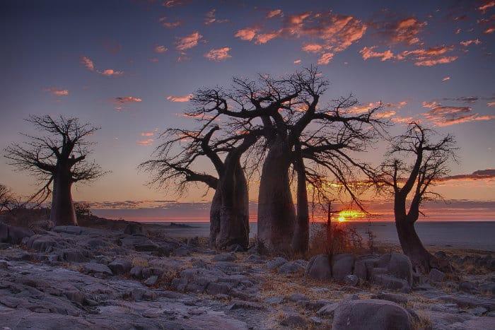 Lekhubu Island at sunrise, Sua Pan, Botswana