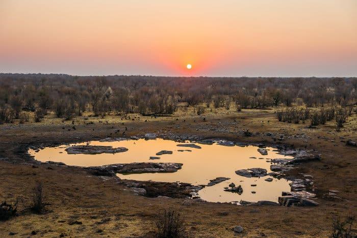 Moringa waterhole at sunset, near the Halali Camp