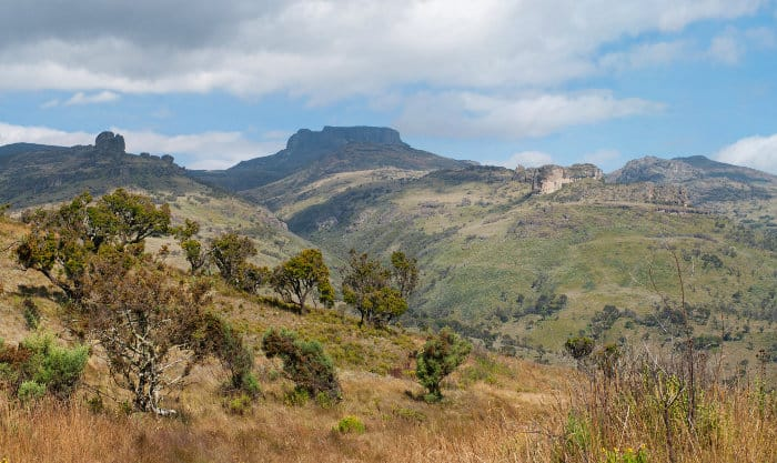 Mount Elgon National Park lies on Kenya's border with Uganda