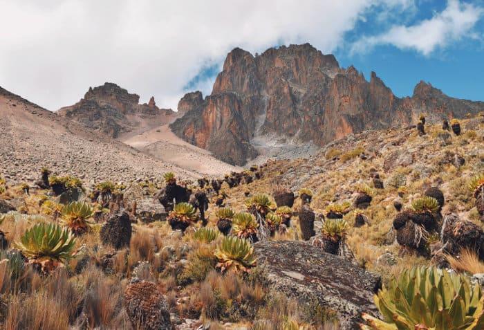 Mount Kenya peaks seen from Mount Kenya National Park