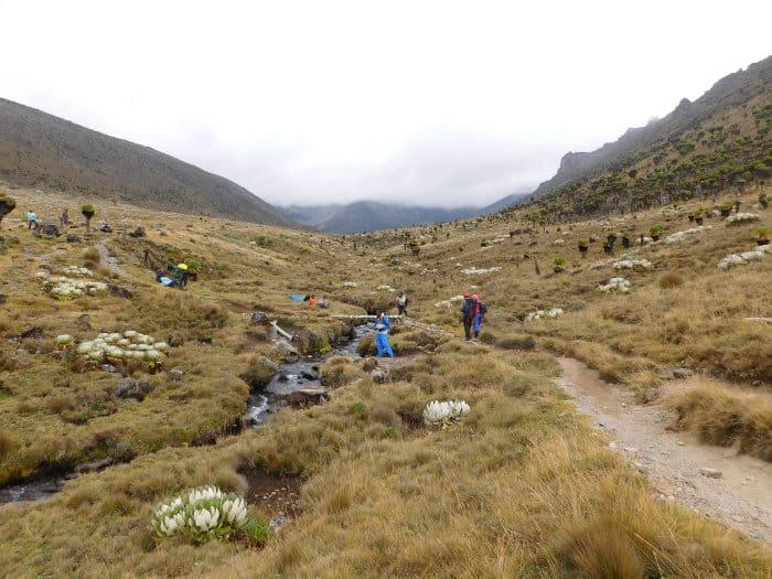 Teleki Valley in Mount Kenya National Park