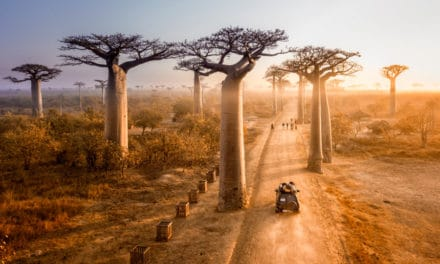 17 fun & unmissable things to do in Madagascar (Africa's unique island)