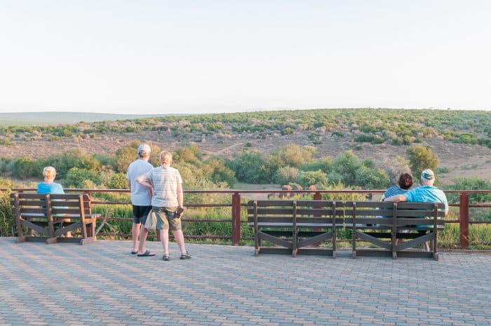 Tourists observing elephants and buffalo at the Addo rest camp waterhole