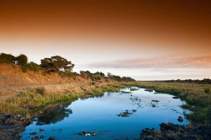 Typical landscape in the Kruger National Park