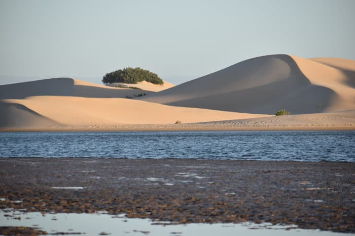 Magnificent sand dunes near Addo in South Africa