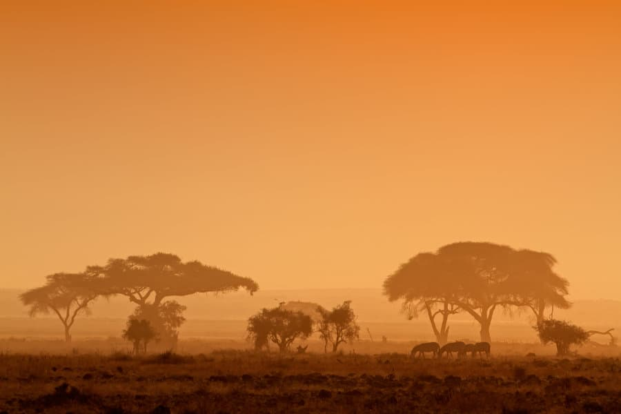 African sunset guide – Safari, savannah, sea & sundowners