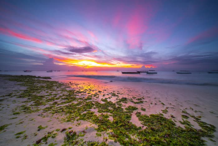 Sunset over Nungwi beach, with pink orange clouds and local fishermen boats