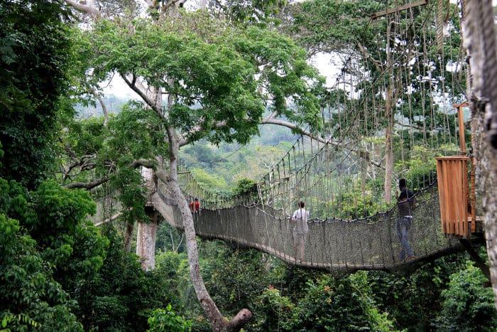 The Canopy Walkway in Kakum National Park, Ghana