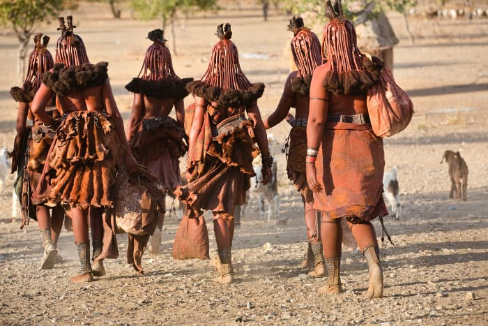 A group of himba women return to their village after a long day of work