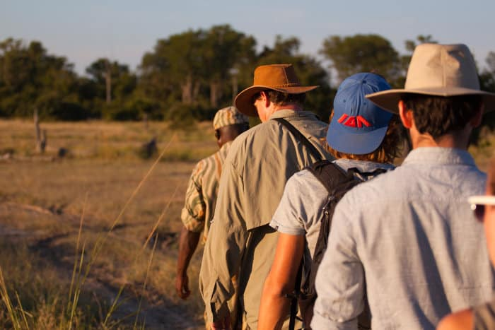 South Luangwa is the birthplace of walking safaris