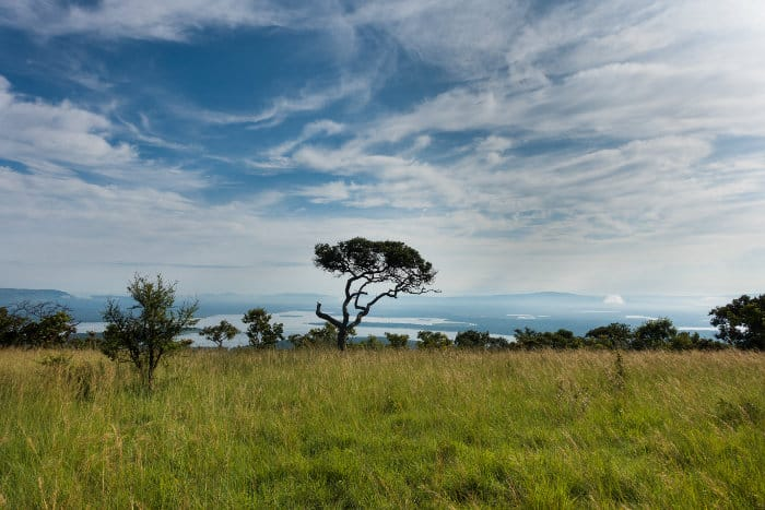 Typical landscape in the Akagera National Park, Rwanda